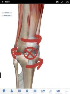 ひざ関節全体が痛むのは半月板のズレ